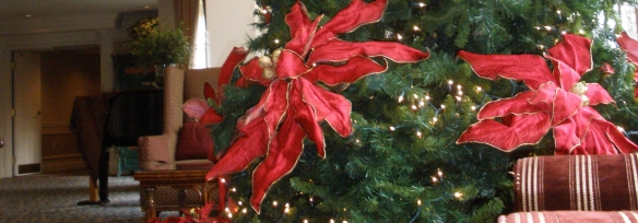 christmas tree in nj