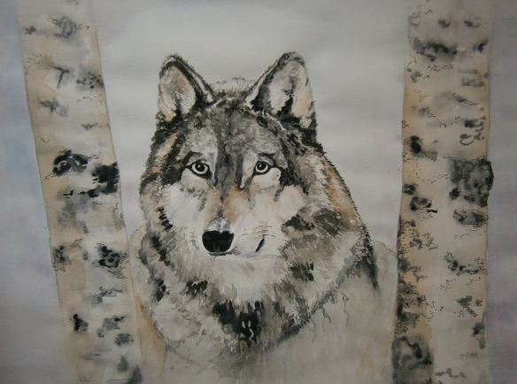 wolf cropped